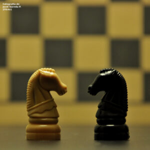 Cavall blanc i negre de joc d'escac cara a cara